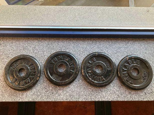 Alteres, Pesos, Barra de 120cm e Molas