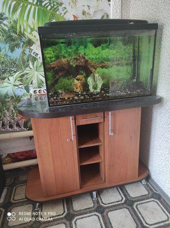 Продаю комплектом акваріум