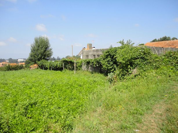 Terreno agrícola e construção