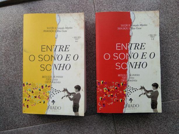"""Livro """"Entre o Sono e o Sonho - Vol VII"""""""
