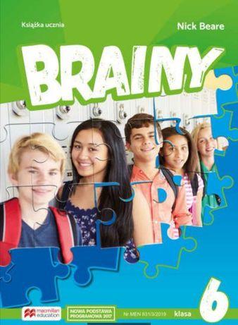 Brainy 6 7 testy język angielski