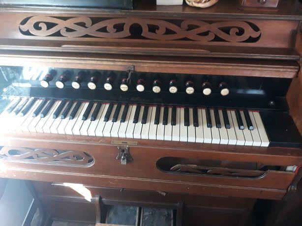 Fisharmonia organy kościelne niemieckie