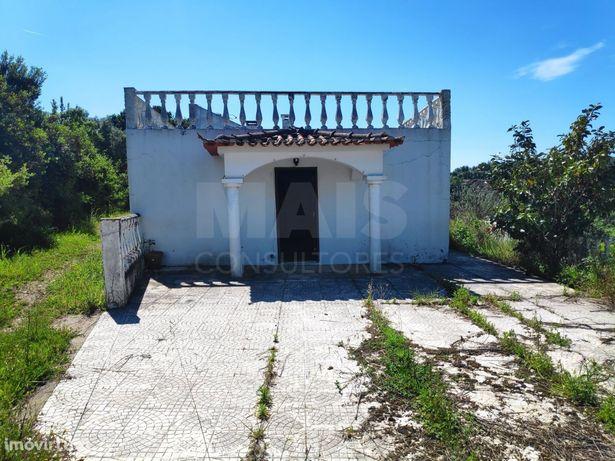 Moradia T4 com 6000 m2 de terreno - Cartaxo