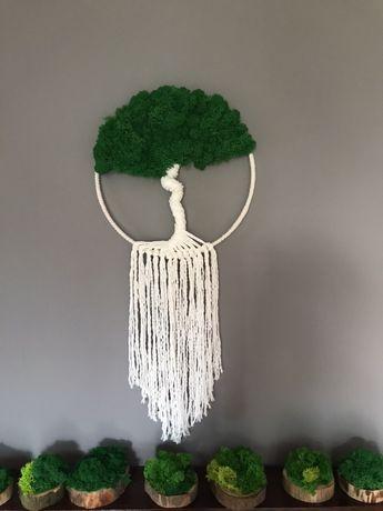 Łapacz snów Drzewko szczęścia Mech Chrobotek średnica 30cm