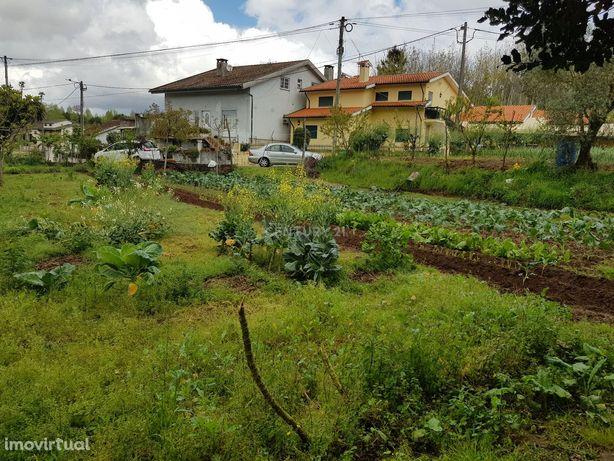 Terreno para construção São Martinho, Aguada de Cima, Águeda, Aveiro