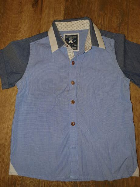 Koszula next 98 cm