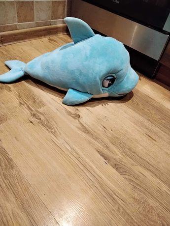 Delfin dla dzieci