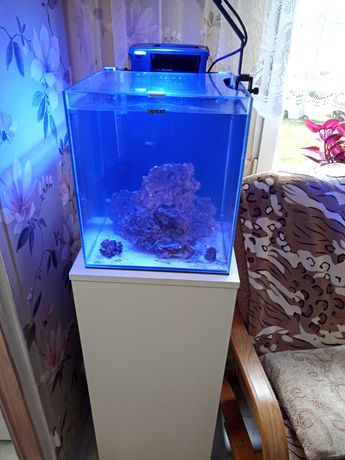 Zestaw Akwarium morskie Aquael 49L nano reef Duo
