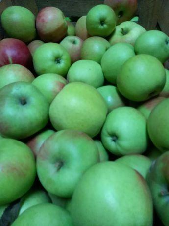 Jabłka, Gruszki, Warzywa, Miód, Sok jabłkowy