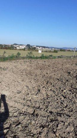 Campo com 7.200m2 em Junqueira - Vila do Conde