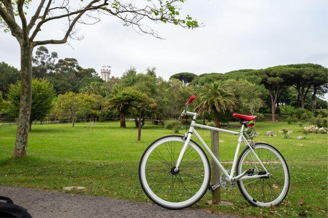 Bicicleta singlespeed/fixie