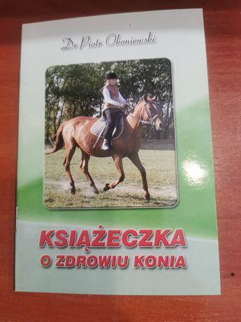 Książeczka o zdrowiu konia