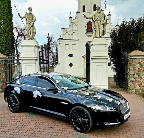 Auto do ślubu Piękny czarny Jaguar Xf