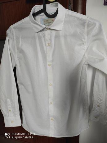 Koszula chłopięca ZARA roz.134 (size9)