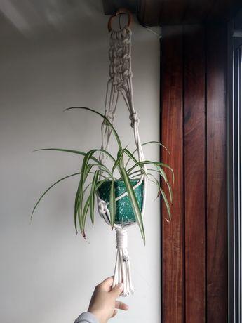 Suporte plantas em macramé