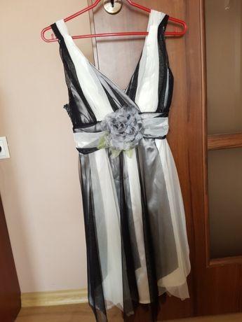 Sukienka firmy Creativity 36