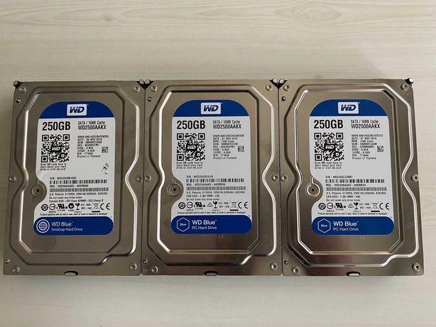 Lote Disco Rigido HDD Western Digital 250GB 3x