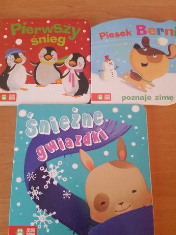 Zestaw książek dla dzieci o zimie Zielona Sowa