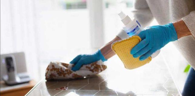 Faço todo o tipo de limpezas domésticas