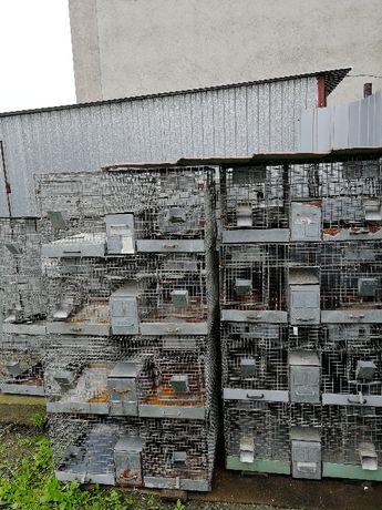 KLATKI do hodowli szynszyli, królików, przepiórek