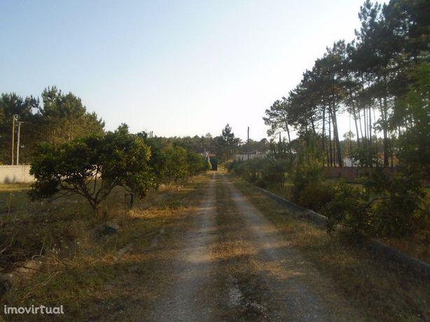 Terreno com cerca de 12500m2 muito perto da Praia de São ...