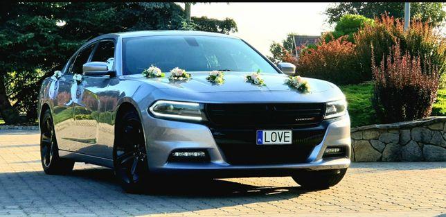 Auto do ślubu Dodge Charger 400KM V8 Mustang Challenger Camaro Audi US