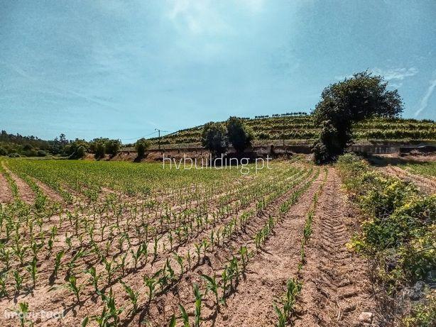 Terreno agrícola à venda na freguesia de Manhente (Barcelos)