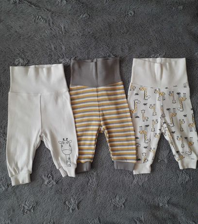 Spodenki, spodnie zestaw 56