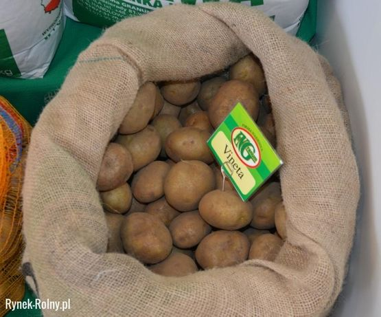 ziemniaki Vineta jadalne przepyszne Bazarek Ełcki