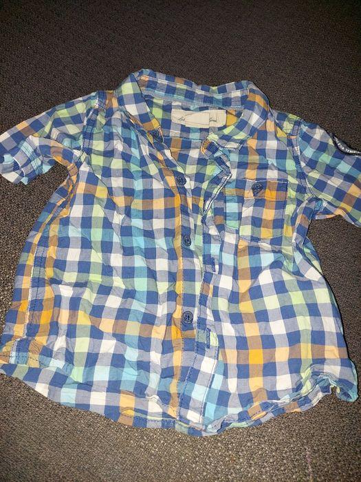 Koszula na krótki rękaw rozmiar 74 firmy H&M Pierkowskie - image 1