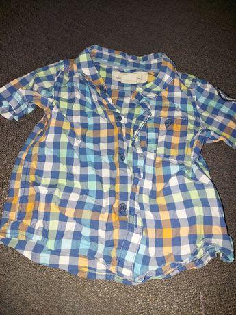 Koszula na krótki rękaw rozmiar 74 firmy H&M