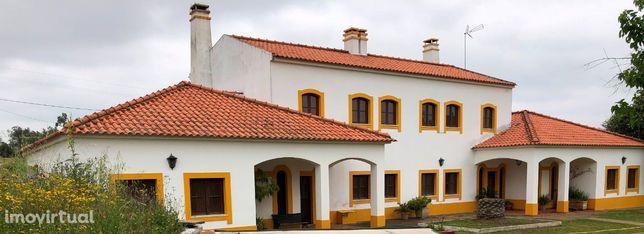 Quinta - 6 hectares a distância pedonal de Vila de Frades e Vidigueira