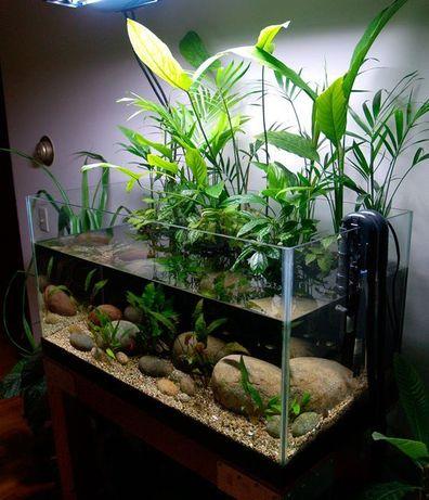 Оформление и чистка аквариумов, рыбки, коряги растения.
