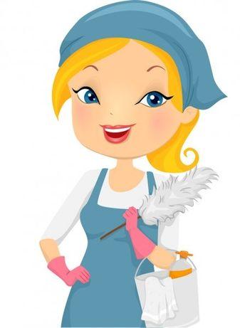 Sprzątanie mieszkań, domów, wybranych pomieszczeń, mycie okien