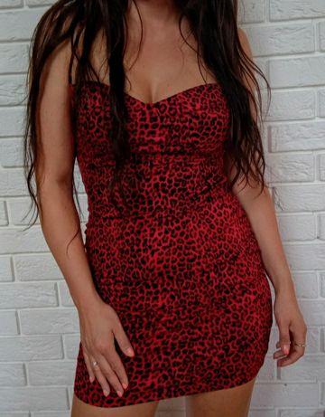 Sukienka w panterkę czerwona  M