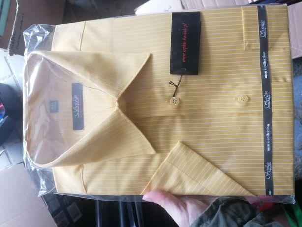 Koszula w paski żółta