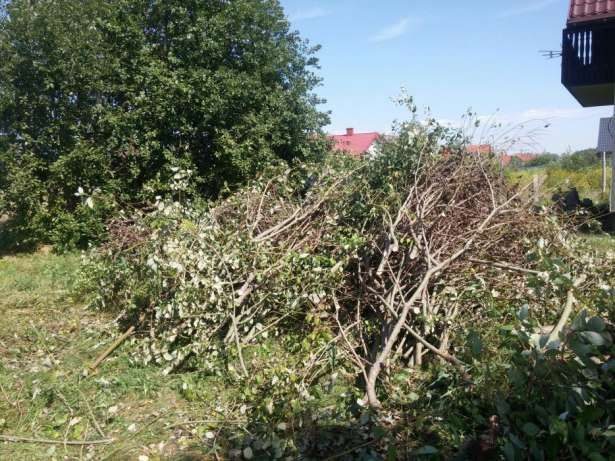 Wycinka przycinanie,drzew,koszenie traw,drobne rozbjórki