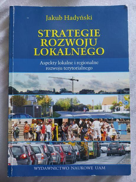 Książka Strategie rozwoju lokalnego