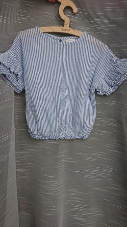 Next 116 krótka bluzka z ozdobnymi rękawkami bialo niebieska