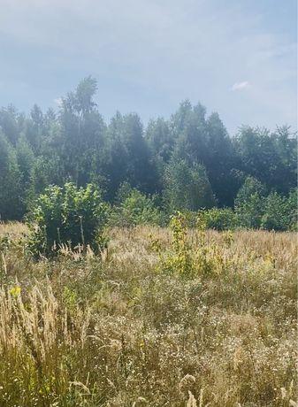 Участок в Стоянке с выходом в лес