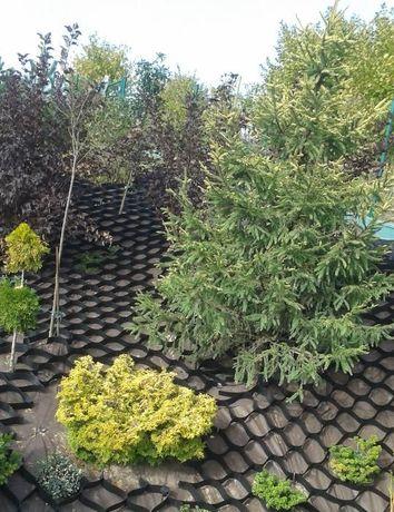 Kompleksowe usługi ogrodnicze, oczka, altany, kostka