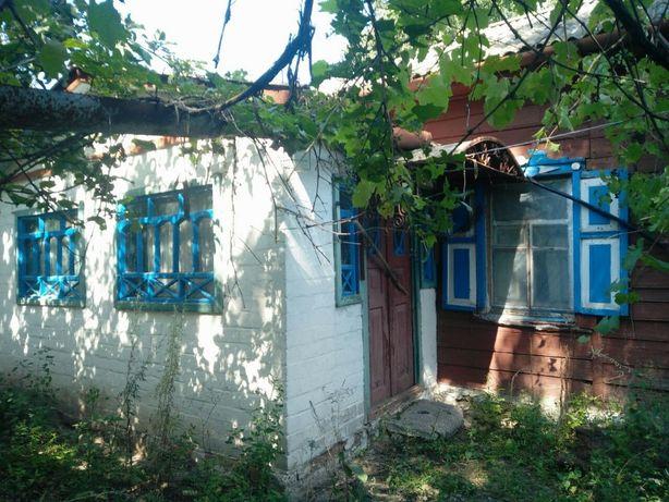 Продаю дом с участком в с. Выбли Черниговской обл.