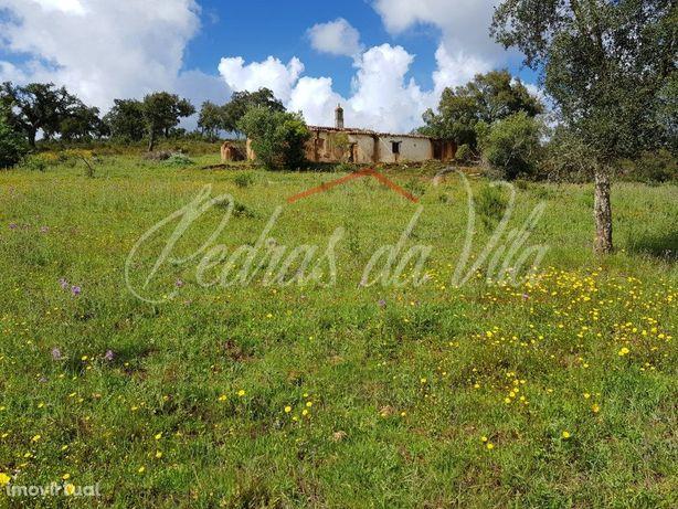 Quinta de 18,3ha com ruína em Santa Maria - Odemira