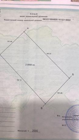 Продам три земельных участка по 2га Любимовка Вышгородский район