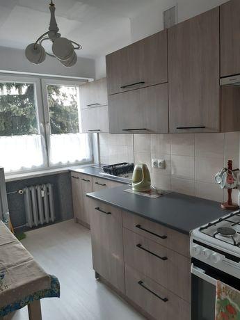 Mieszkanie do wynajęcia,2 pokoje 48m2