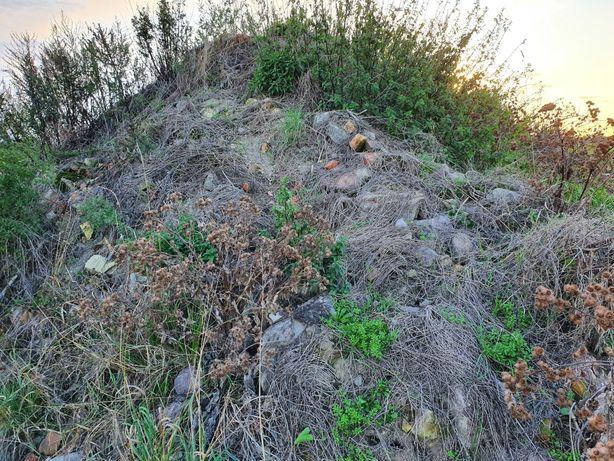 Ziemia, gruz, kamienie.
