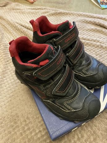 Демисезонные ботинки geox размер 31