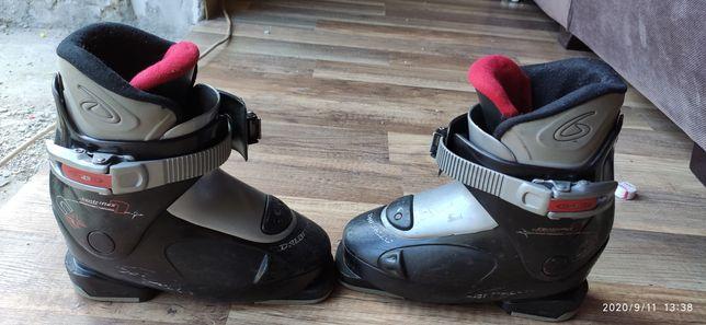 Buty narciarskie Dalbeo