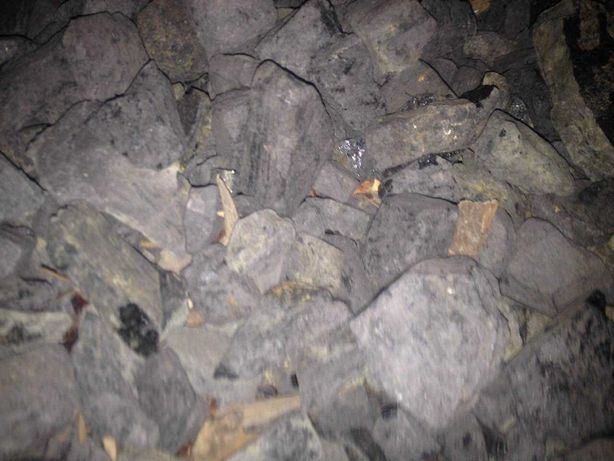 Продам вугілля  1000грн.тонна київська обл.