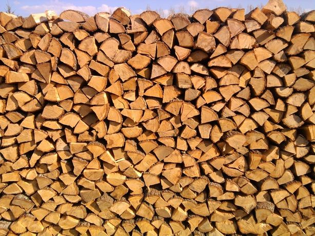 Drewno opałowe grube drzewo kominkowe opał Osiek Białośliwie Szamocin!